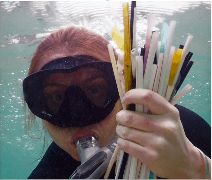 plast-v-oceane