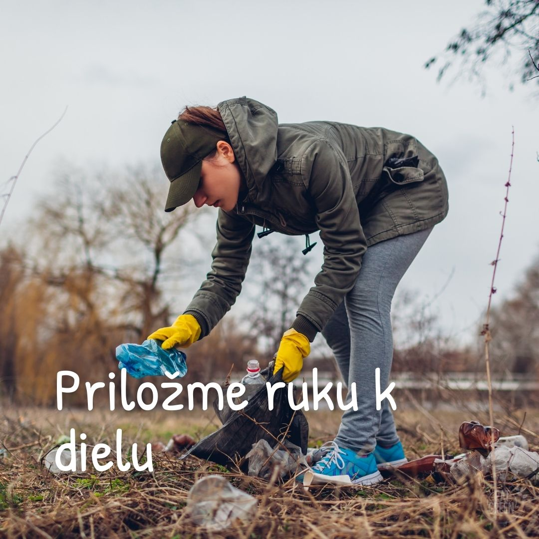 zbieranie-odpadu-v-lese
